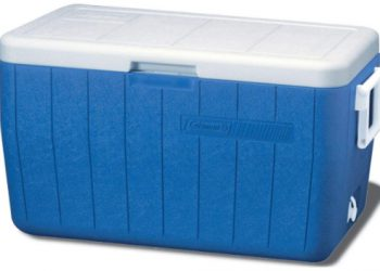 Best Medium Sized Coolers