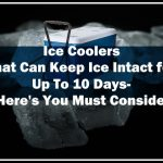 Ice Coolers That Can Keep Ice Intact for Up To 10 Days- Here's You Must Consider